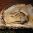 セル牡蠣(300円)