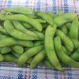 枝豆(350円?)