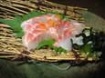 天然真鯛刺し(350円)