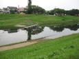 運河水浸し