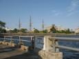 東洋大学の舟