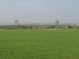 江戸川の景色