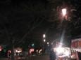 清水公園の夜桜2