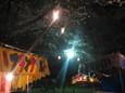 清水公園の夜桜3